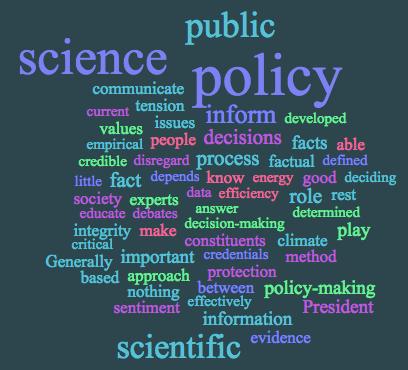 policy word cloud mungai