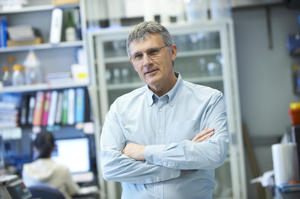 Alan Hall, chair of Cell Biology to Sloan-Kettering, died on Sunday night.