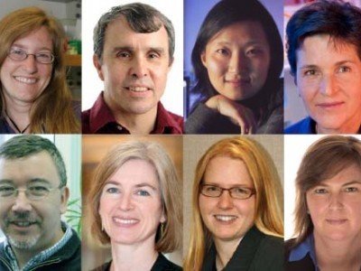 At ASCB 2015, Big Data and Big Tech Meet the Big Questions: Clockwise from top left, Julie Theriot, Eric Betzig, Xiaowei Zhuang, Deborah Gordon, Roberto Mayor, Jennifer Doudna, Kristi Anseth, and Angela Belcher