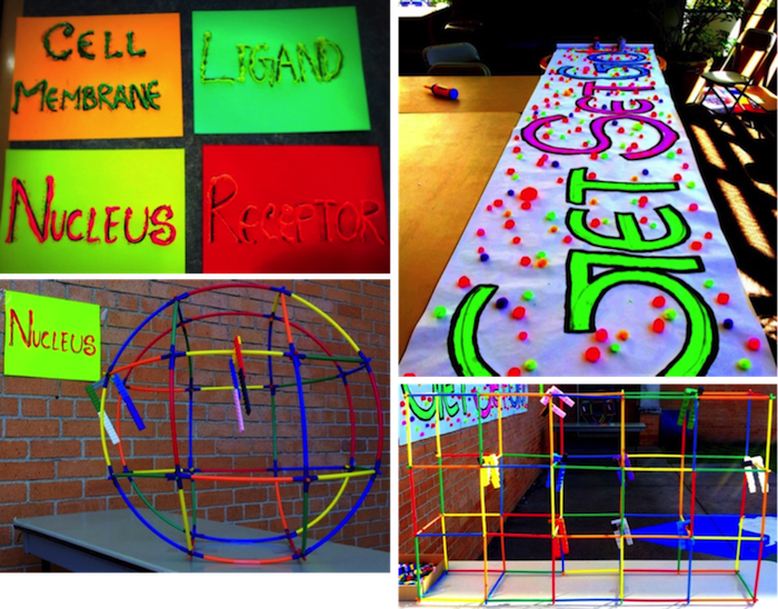 "Figure 6: Art-science game installation named ""Get Ligand Set Receptor Go!"" at T.J. Rusk Middle School, Dallas, TX. From top left, clockwise, preparation of labels for components of cell, creating the poster, Installation of nucleus, installation of cell membrane, ligands and receptors. Materials: Sticks and connectors, LEGO, acrylic on paper ((©2015 Dhruba Deb)."