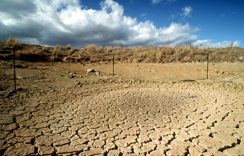 Drought is quickly depleting water reserves throughout California. How is the scientific community helping? Photo from CSIRO.