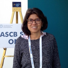 Mary Teruel's systems biology lab at Stanford is pursuing the connection between glucocorticoid circadian cycles and obesity. ASCB photo by David Clarke.