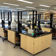 New labs have rows and rows of open labs to promote collaboration, but does it? Photo by Mason Posner.