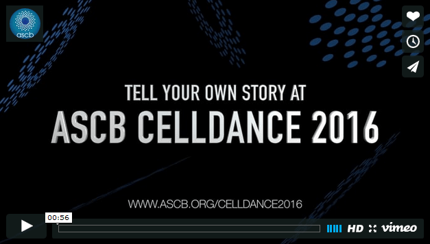 Hold on and click here for the Celldance Mashup Video.