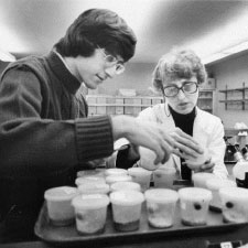 Ellen Rasch (right) with Paul Monaco observing vials of the fly Sciara in her lab at Marquette University in 1976. (Photo is courtesy of the Department of Special Collections and University Archives, Marquette University Libraries.)
