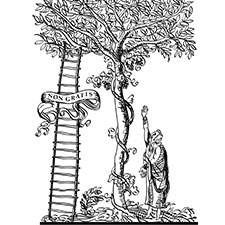 Figure 2. The authors' satirical view of the Elsevier logo: The tree has grown (AD 2016).