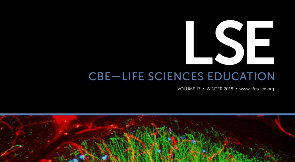 lse201817issue-4cover