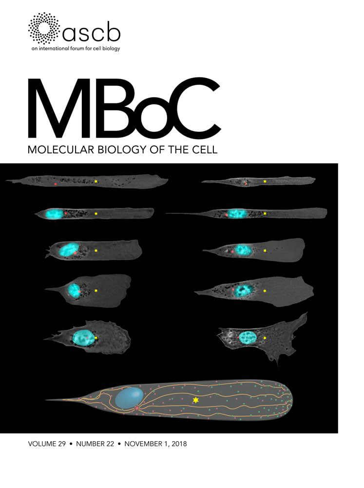 mboc201829issue-22cover