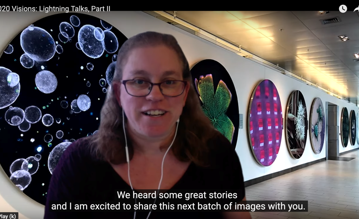 Screenshot of Erika Reinfeld (virtually) introducing the Koch Institute image gallery awards, shown behind her.